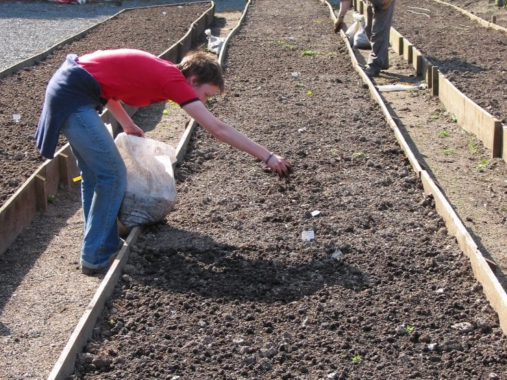Broadcasting seed onto a seedbed